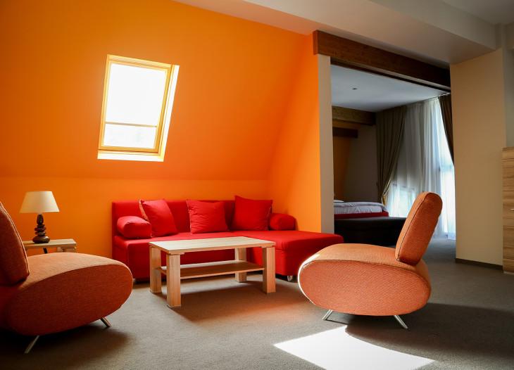 Suite VIP (2)